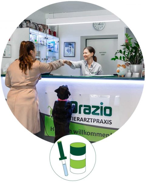 Tierarztpraxis d'Orazio - Tierärztliche Hausapotheke