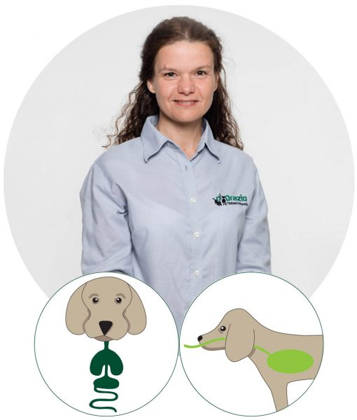 Tierarztpraxis d'Orazio - Dr. Alexandra Galler, Dipl.ECVIM-CA