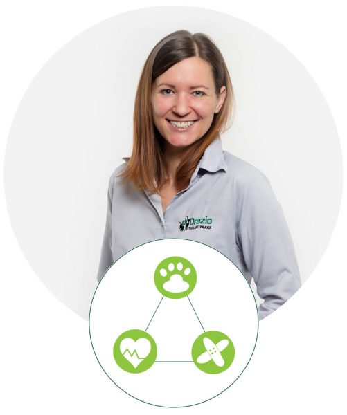 Tierarztpraxis d'Orazio - Praxisorganisation