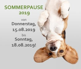 Sommerpause 2019!